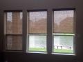blinds-13