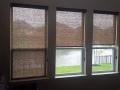 blinds-6