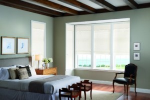 Houston Window Blinds